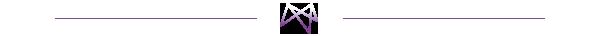 Marsden Group Divider Graphic Purple Light